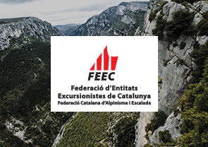FEEC-image-preview-295x208